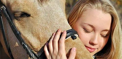 troubled teen equine therapy