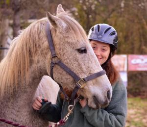 boarding school with equine therapy